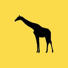 giraffe icon. flat icon illustration isolated sign symbol