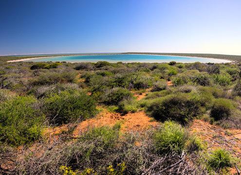 Little lagoon - shark bay - Western Australia