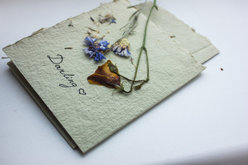 Postcard from dried flowers