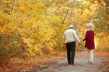 Lovely mature couple in autumn park