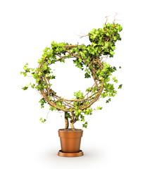 Gender concept. The green plant in form of mars sign. 3d illustr