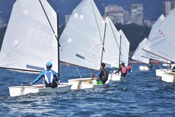 Wall Murals Sailing Sport Sailors training