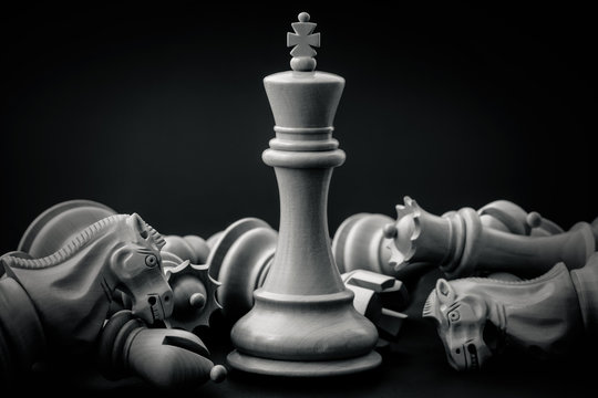 Black and White King and Knight of chess setup on dark backgroun