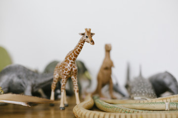 A plastic toy giraffe amongst other animals.