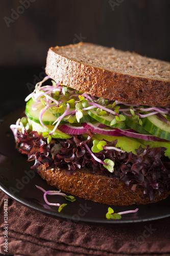 simple greek avocado sandwich radish and avocado sandwich recipes ...
