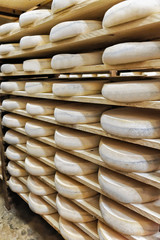 Pile of aging Cheese at maturing cellar Franche Comte creamery