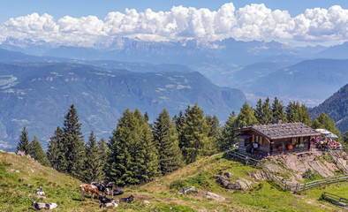 mountain landscape in the Dolomites in south tyrol, Italy. Europe. mountain farm with grazing animals