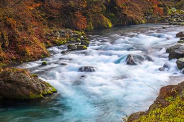 Crystal water of mountain creek  in Nikko, Tochigi, Japan