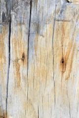 texture old wood , wood background style vintage , wood pattern
