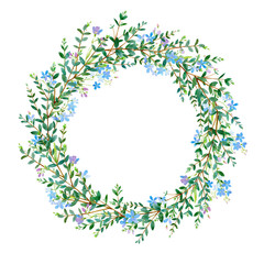 Floral wreath.Garland with eucalyptus branches and forget-me-not flowers. Watercolor hand drawn illustration.It can be used for greeting cards, posters, wedding cards.