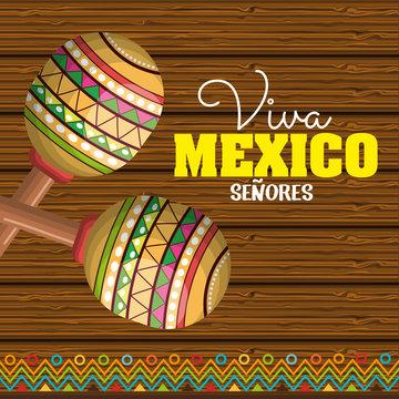 viva mexico poster icon vector illustration design