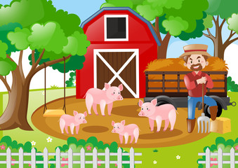 Farmer and pigs in the field