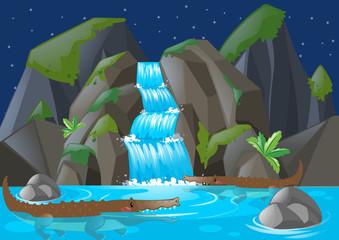 Crocodiles swimming in the river