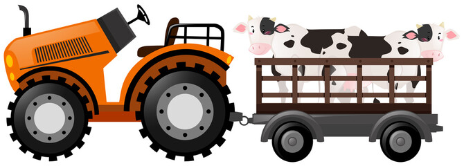 Orange tractor with two cows on wagon