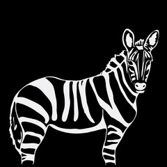 Hand-drawn pencil graphics, zebra. Engraving, stencil style.