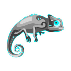 grey chameleon on white background