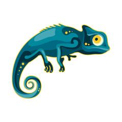 blue-green chameleon