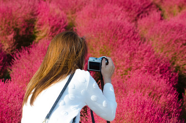 girl take a photo in kochia garden