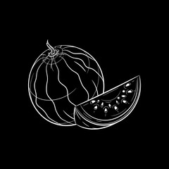 Hand drawn watermelon sketch. Vector illustration