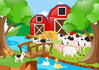 Farm animals on the farm