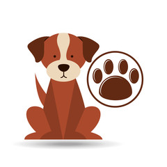 veterinary dog care paw print icon vector illustration eps 10