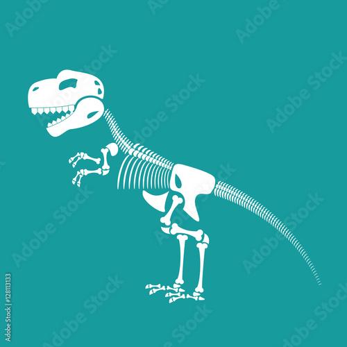 Dinosaur skeleton isolated. Remains of Tyrannosaurus. Skull T-Re