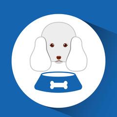 digital pet shop with poodle and food bowl vector illustration eps 10