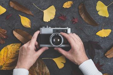 カメラと落葉
