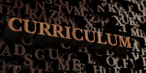 Curriculum - Wooden 3D rendered letters/message.  Can be used for an online banner ad or a print postcard.