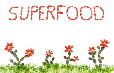 Superfood, Buchstaben in Goji Beeren gelegt mit Kresse als Rasen und Blumen aus Goji Beeren, und Kürbiskernen mit Textfreiraum