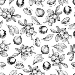Vector seamless pattern of macadamia nuts and branch. Hand drawn engraved art. Healthy beauty hair nutrition.
