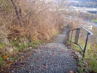 empty outdoor stairs with fallen autumn leaves
