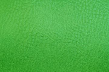 green texture leather skin