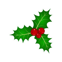 Christmas berry vector illustration