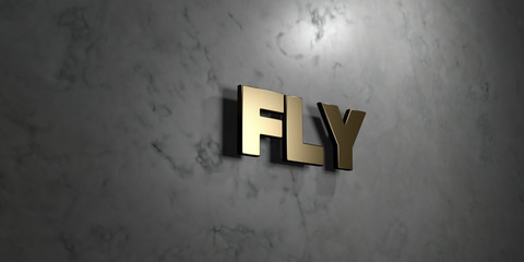 Fly - Gold sign mounted on glossy marble wall  - 3D rendered royalty free stock illustration. This image can be used for an online website banner ad or a print postcard.