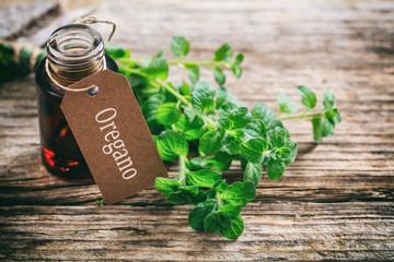 Fresh oregano twig on wooden background