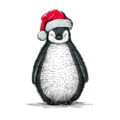 penguin, black and white engrave. Christmas hat.