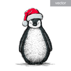 penguin, black and white engrave. Christmas hat. vector