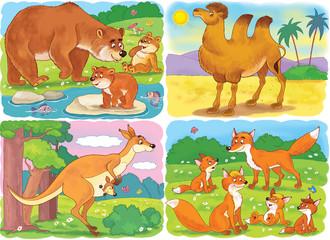 Small set of cute wild animals