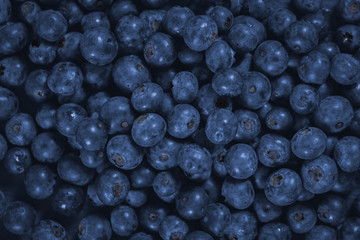 Blueberry - Pile Of Fresh Blueberries close up