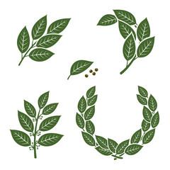 Bay leaf set. Vector