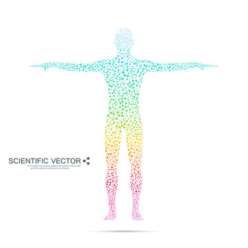 Structure molecule of man. Abstract model human body DNA . Medicine, science and technology. Scientific Vector for your design.