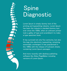 Human spine. Template with backbone