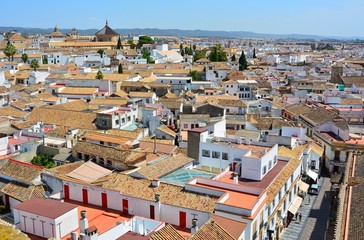 View over Cordoba, Spain.