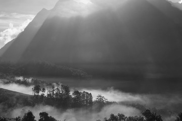 High mountain and fog in the morning.,black and white style