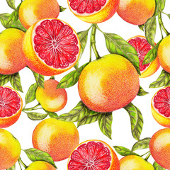Seamless pattern of hand drawn grapefruit
