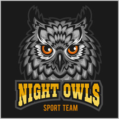 Night Owls - sport team. Head mascot