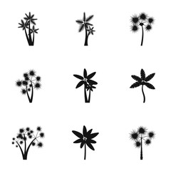 Tree palm icons set. Simple illustration of 9 tree palm vector icons for web