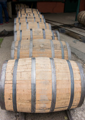Row of Barrels Rolling Vertical
