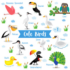 Cute Birds Animal cartoon on white background with animal name. Duck. Dove. Peacock. Swan. Owl. Goose. Toucan. Crane. Pelican. Umbrellabird. Roseate Spoonbill. Avocet. Vector illustration. Set 1.